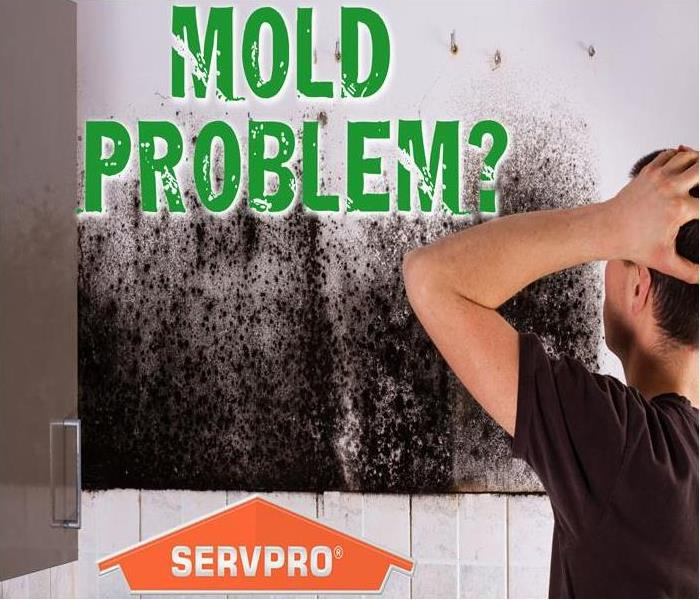 "a man in a black shirt looking exasperated while looking at a mold covered wall. The graphic title reads, ""Mold Problem""?"