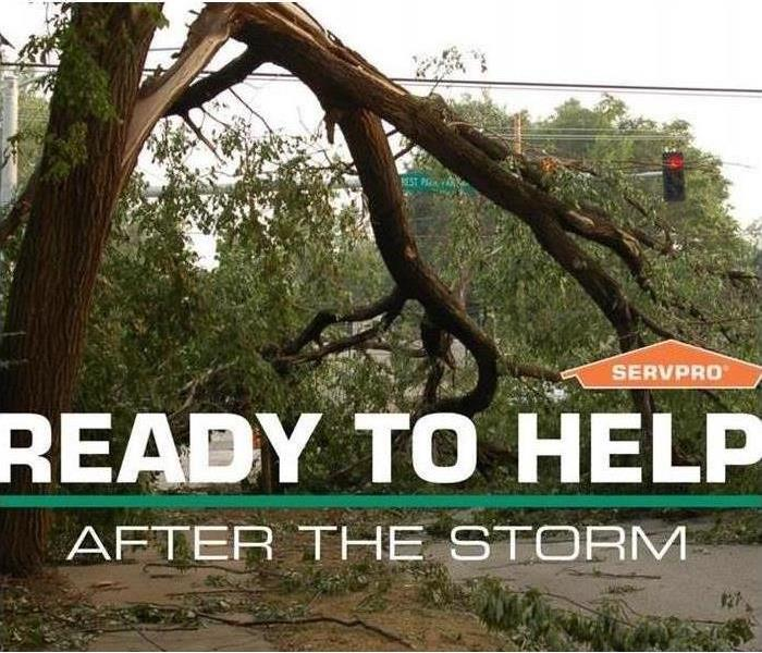 a large tree blocking a road after a storm with graphic saying ready to help after the storm