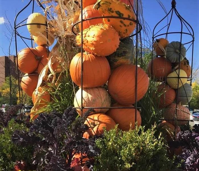 pumpkins in floral decorative cages with multi-colored red, yellow, & green mums