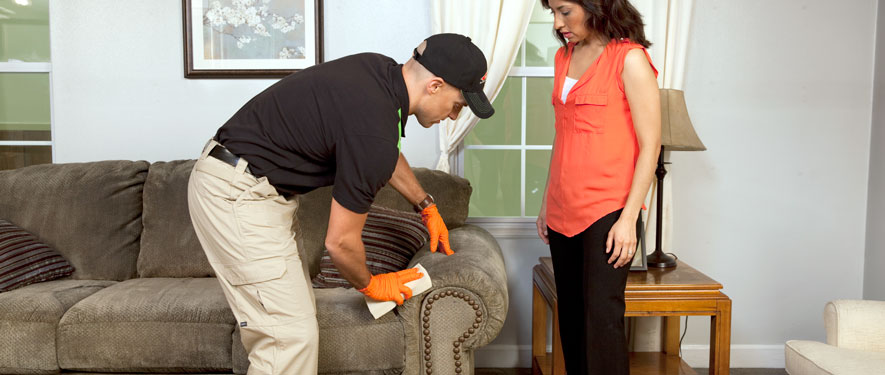 Madison, WI carpet upholstery cleaning